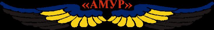 Авиакомпания Амур