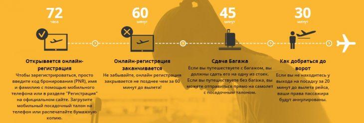 Как зарегистрироваться на внутренние рейсы Пегасус